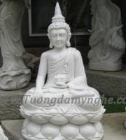ttuong-thich-ca-ngoi (11)