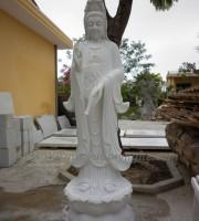 tuong-quan-am-dung (1)