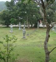 tuong-dan-sanh (18)