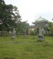 tuong-dan-sanh (5)