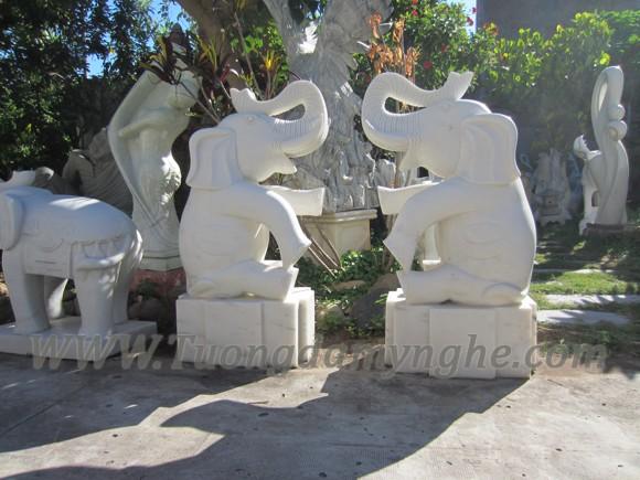 tuong-voi-da-giai-tri (1)